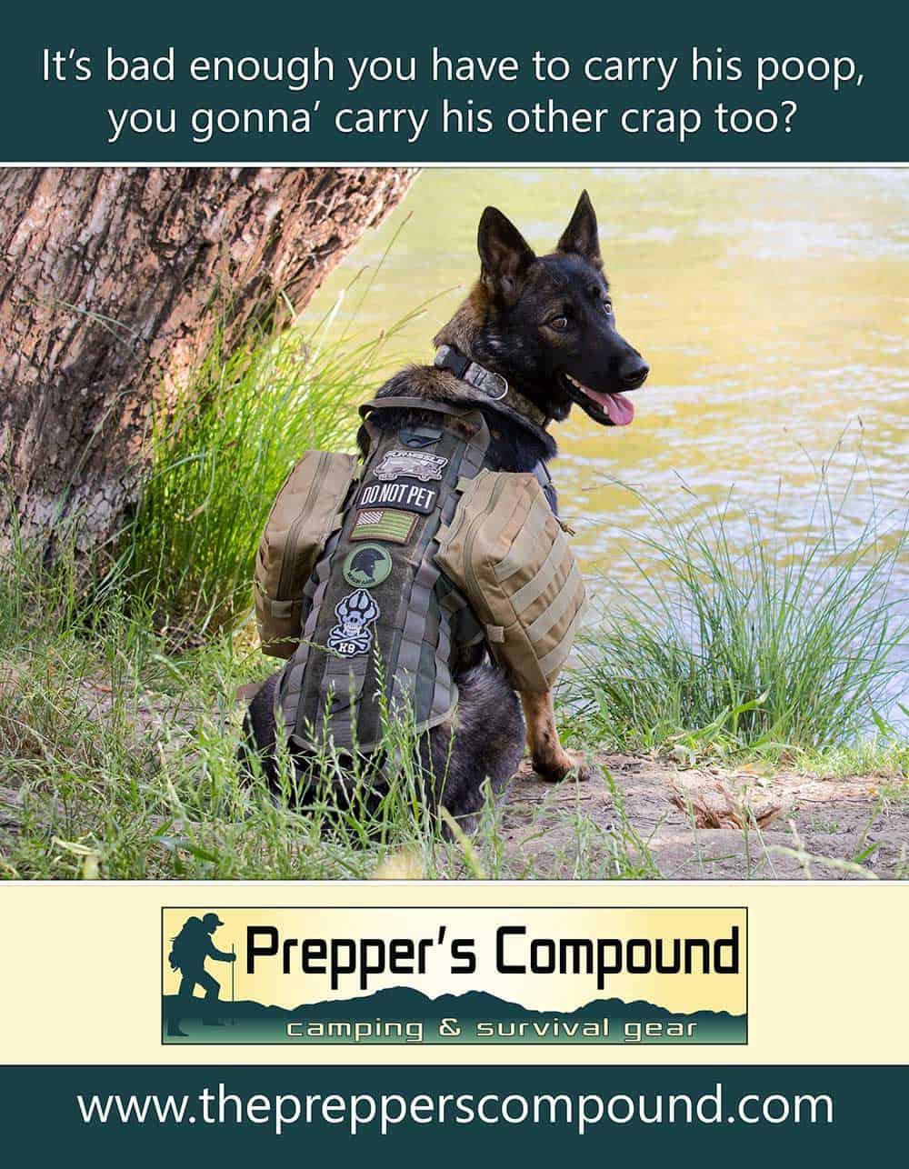 Tabletop Sign Showing Dog Packs for E-Commerce Website