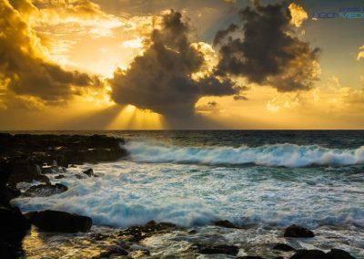 Nature Photography by Richard Ligon